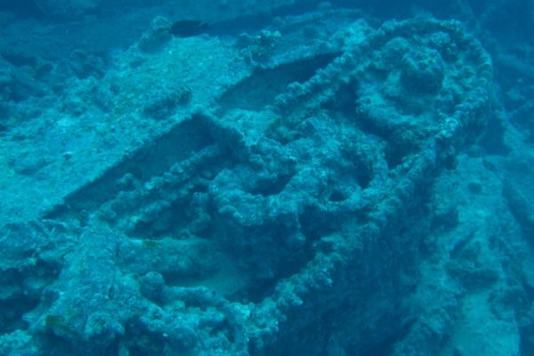 Scuba Diving on a Red Sea Yacht Charter