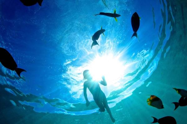 yacht-zoo-destinations-maldives05