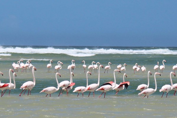 yacht-zoo-destinations-seychelles08