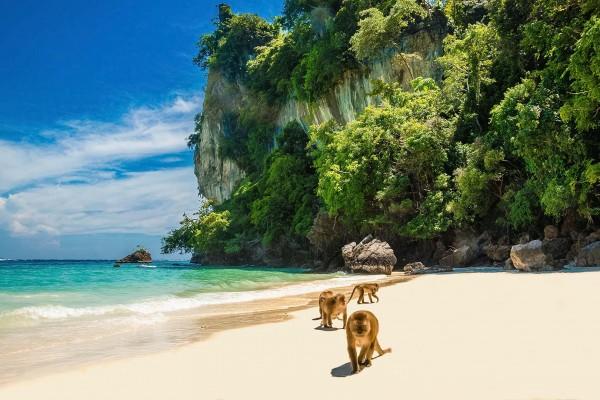 yacht-zoo-destinations-thailand04