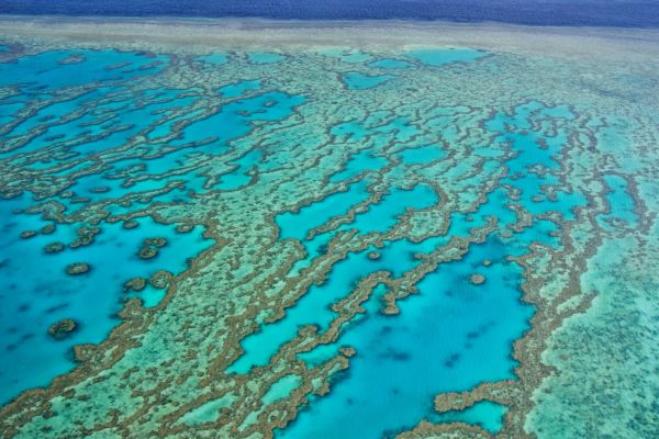 Great Barrier Reef on a Australia Yacht Charter