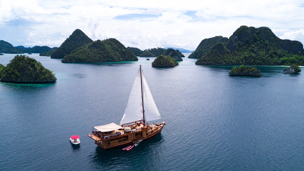 S/Y SEQUOIA yacht for charter