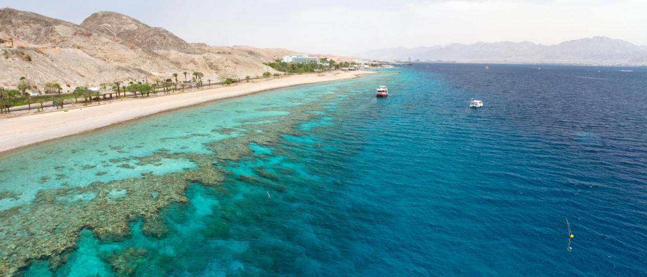 Stunning Yachts for Yacht Charter In The Red Sea