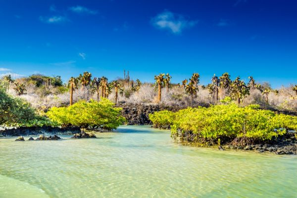 View from a Galapagos Yacht Charter