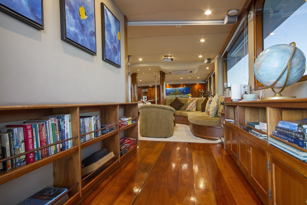 m/y yacht for charter living space