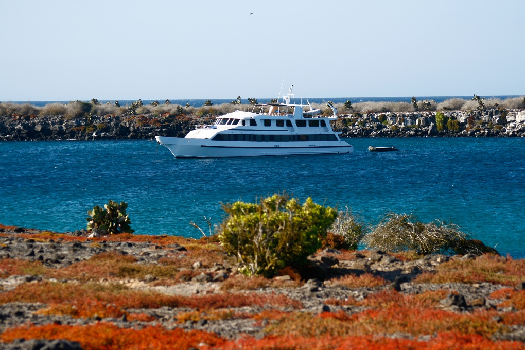 M/Y INTEGRITY yacht for charter at anchor galapagos